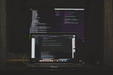 project management vs software development