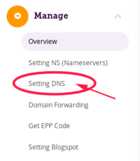 2 Manage domain