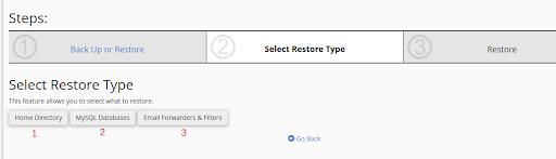 Select restore type JagoanHosting