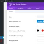 Penjelasan Lengkap Opsi Tema atau Theme Options Divi