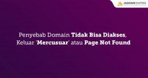 Domain Tidak Bisa Diakses